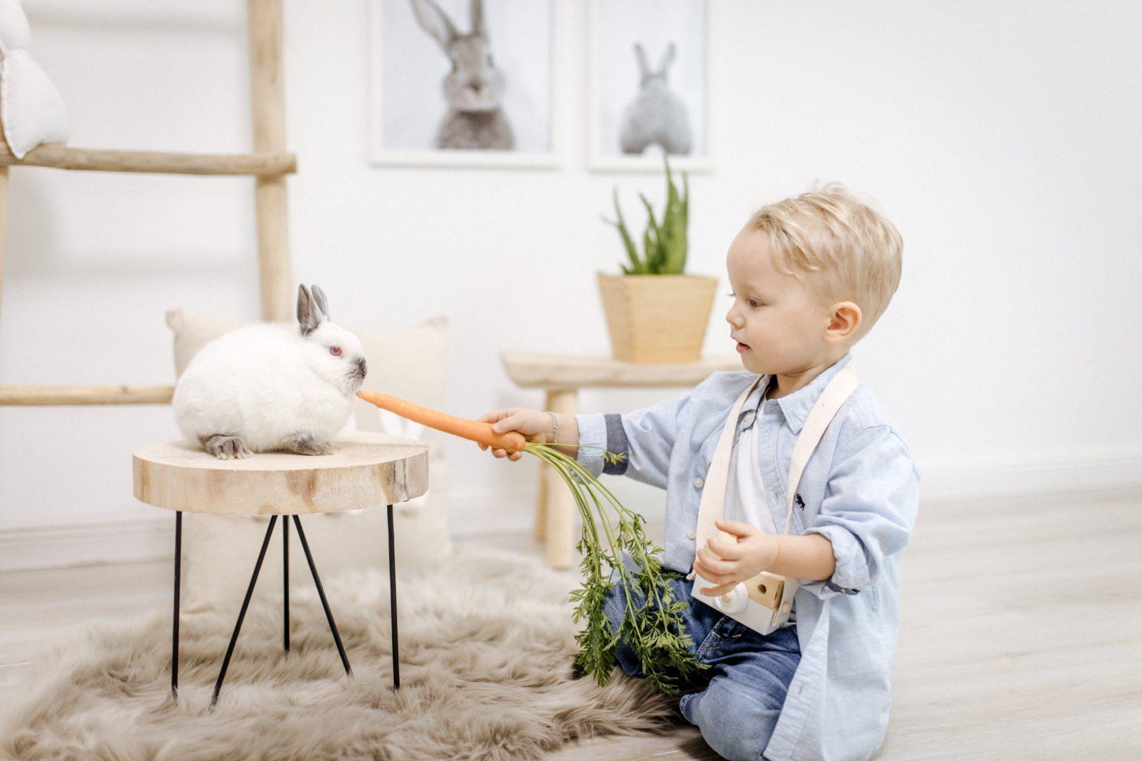 Ostershooting mit kleinen Häschen   Yvonne Scholze Photography im Atelier, Heidenheim