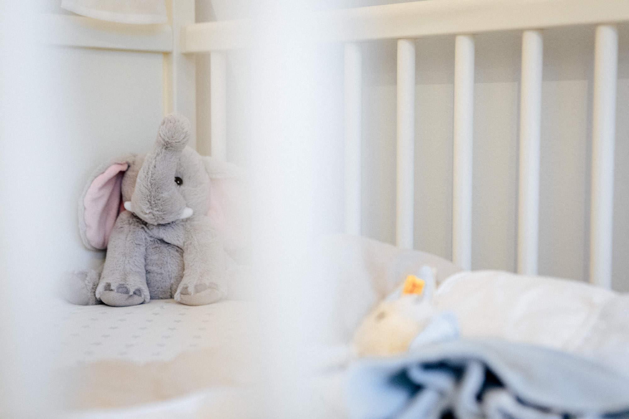 Schwangerschafts Shooting mit Stefanie im Milchbad